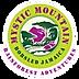 mystic mountain logo.png