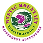mystic mountain logo.png