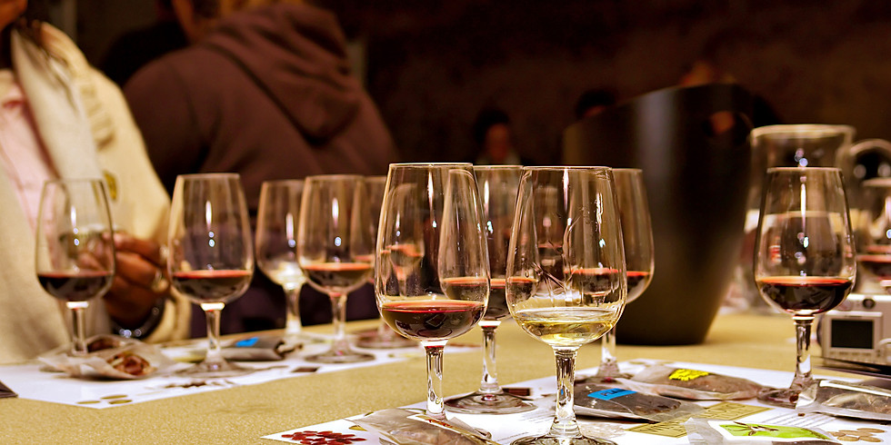 Wine Pairing Study Session (1)
