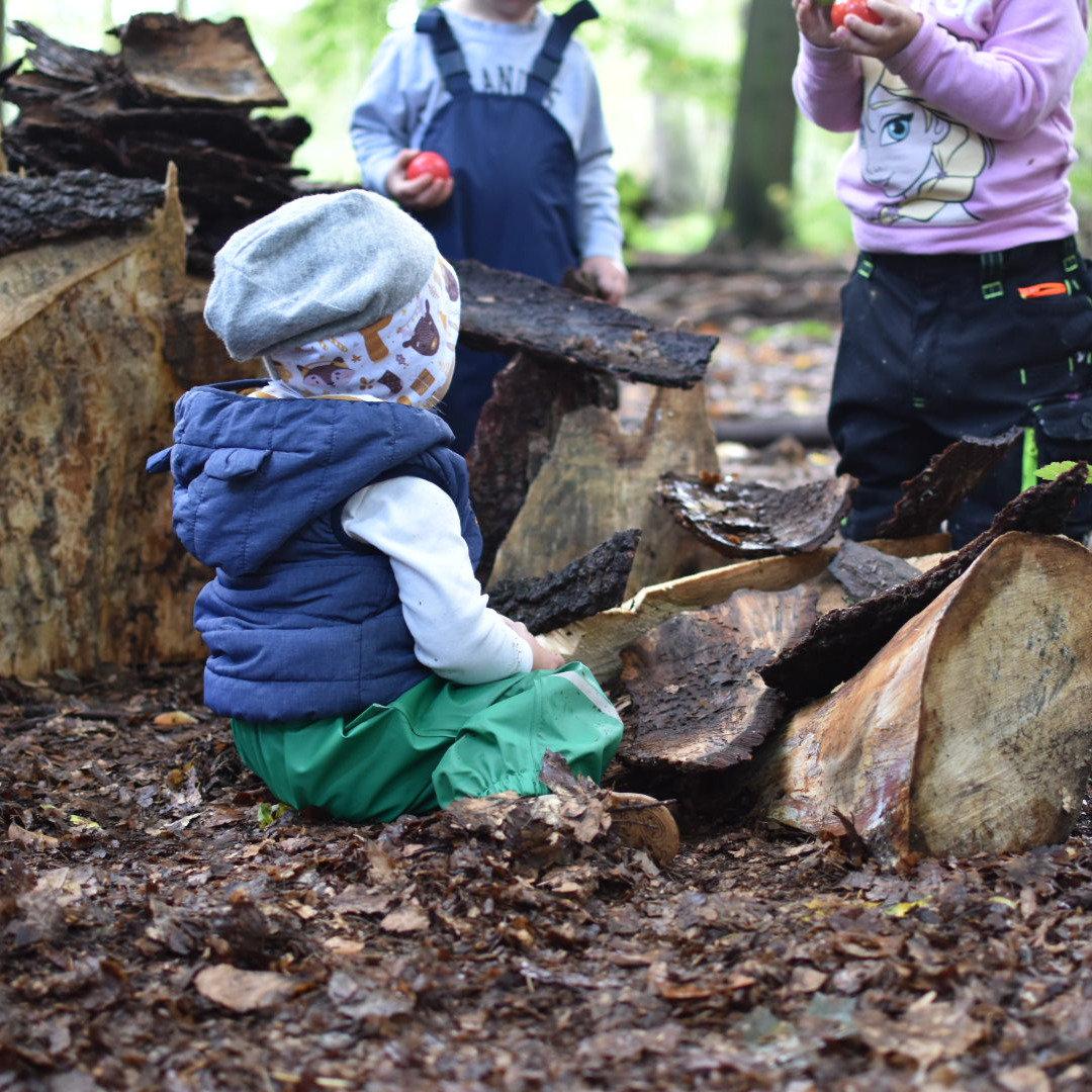 Kleine Waldforscher