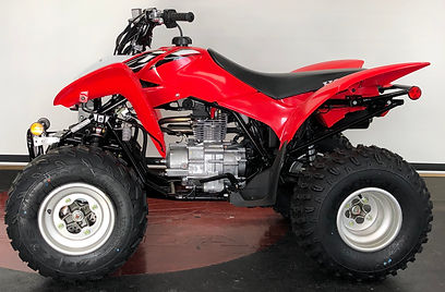 NEW 2020 HONDA TRX250X SPORTRAX