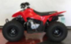 NEW 2020HONDA TRX90
