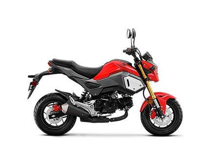 NEW 2020 HONDA GROM 125 ABS
