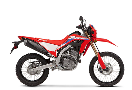 NEW 2021 HONDA CRF300L