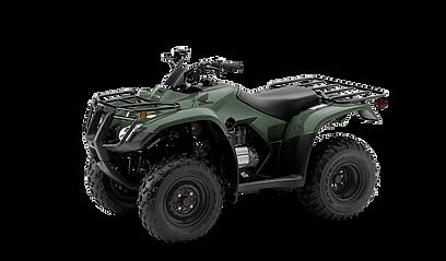 NEW 2020 HONDA TRX250 RECON ES