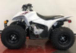 NEW 2019HONDA TRX90