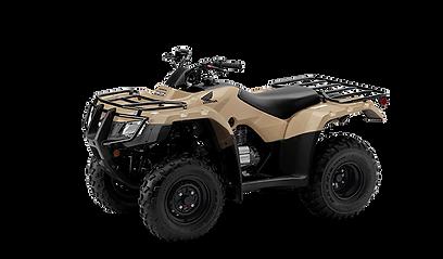 NEW 2021 HONDA TRX250 RECON