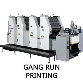 Gang+Run.jpg
