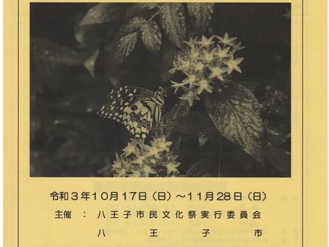 第71回八王子市民文化祭開催!