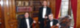 Art String Trio-Library-Pleasandale Chateau