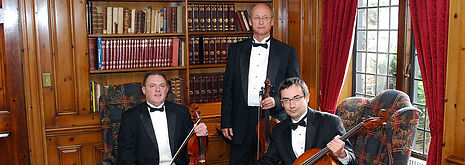 Art String Trio-Library-Pleasandale Chateau