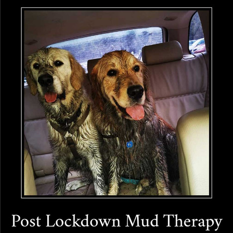 Hendrix and Lizzy and their fist day at the park since lockdown