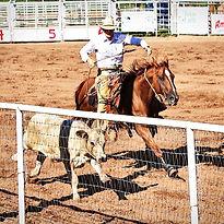Wyatt down the fence.jpg