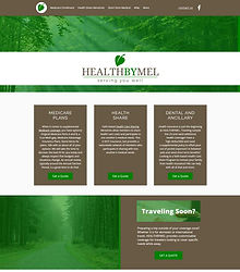 Health By Mel screen grab.jpg