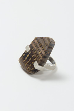 Ring IV (2014); Silver,Reused Wood;