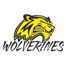 IYS Wolverines.png