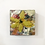 Thumbnail: daisy p