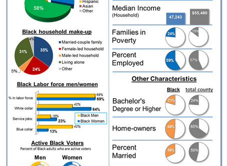Dissecting the Data: Black Families in Houston County