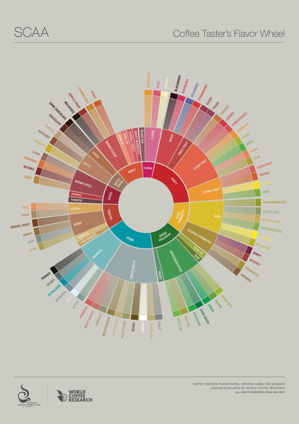 - Specialty Coffee Association of America Reinvents The Flavor Wheel -