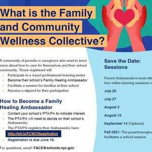 Wellness Collective K220