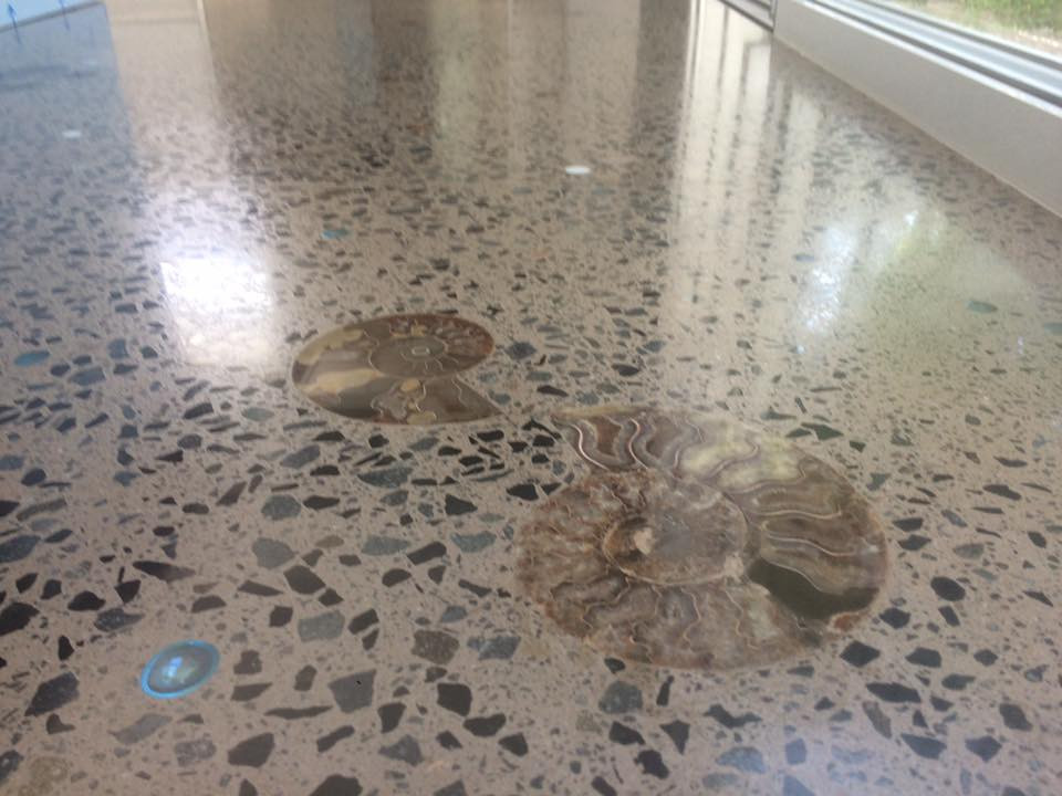 Fossils and glass beads, Polished Concrete