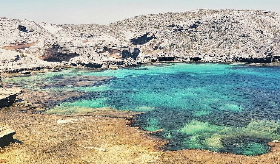 Isle of Rottnest GIN - Coming Soon
