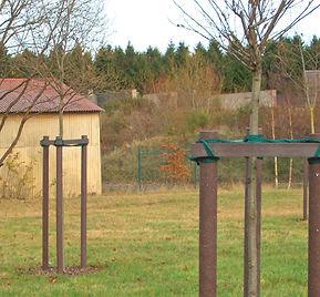 201100_Rundpfosten_m_Spitze_Baumpfahl_63