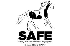 SAFE WEB.png