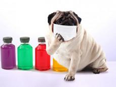 花粉症レーザー治療効く方と効かない方の違いとは?