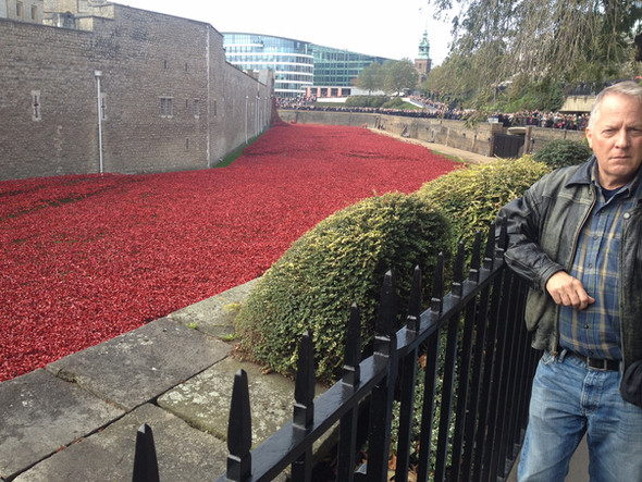 """Lance Ringel at """"Blood Swept Lands and Seas of Red,"""" an art installation at the Tower of London with 888,426 red ceramic poppies – one flower for each British Empire soldier killed during the Great War."""