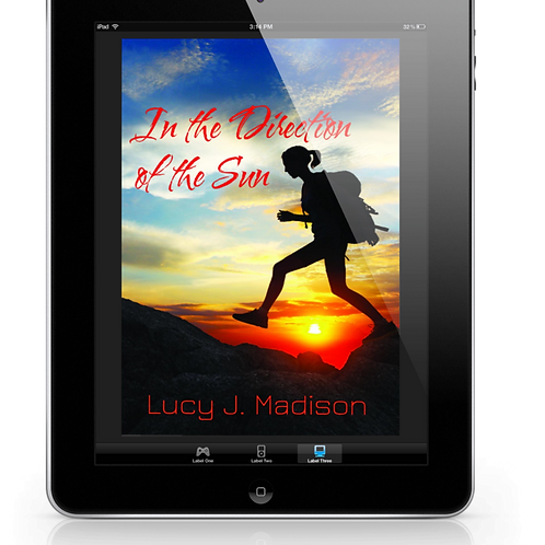 In the Direction of the Sun by Lucy J. Madison .EPUB
