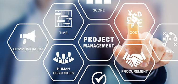 Project Management Delane
