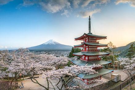 Chureito Pagoda and Mount Fuji with cher