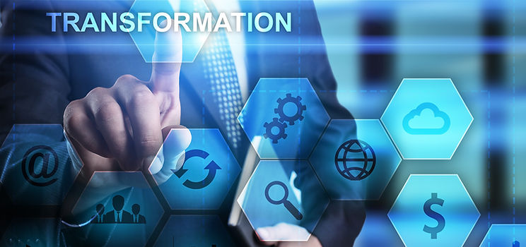 Organizational Transformation Delane