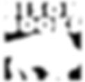 imprimt-bison-logo.png