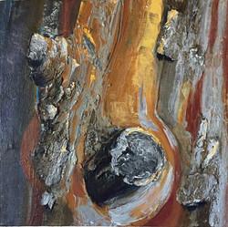 Art Tours in Sedona AZ
