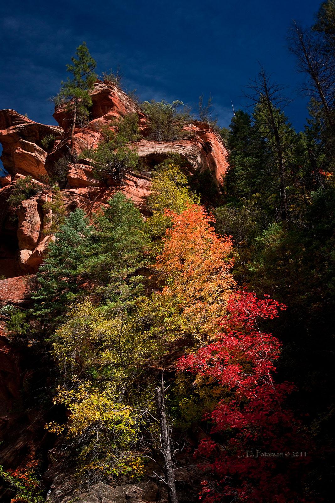 CanyonWall_WestFork_OakCreek_Arizona