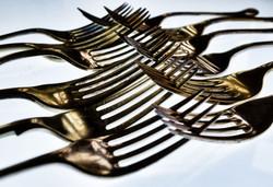 forks6