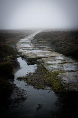 Path of the Dark Peak