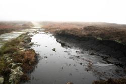 Pools and mist, peak district