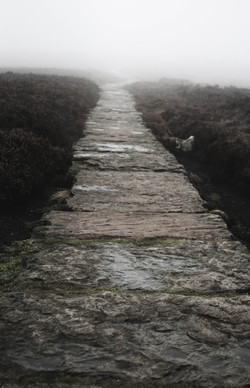 Path into mist, peak district
