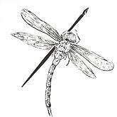 dragonflyandpen.jpg