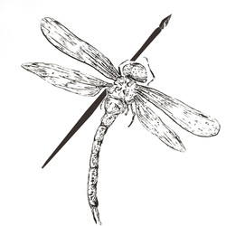dragonflyandpen