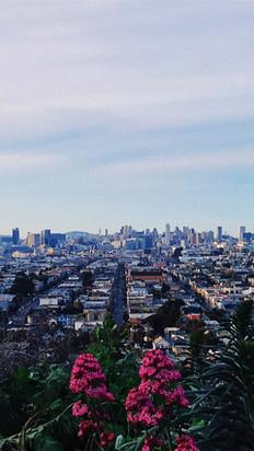 San Francisco by Elena