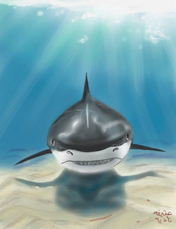 ANZ Studio Shark in Shallow Waters
