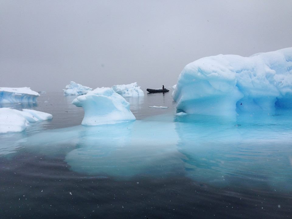 Cruising around Antarctica icebergs