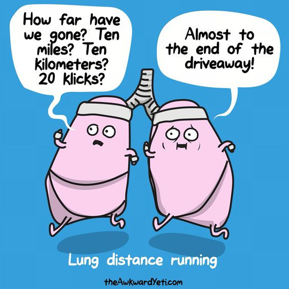 These are my lungs. Illustration from the hilarious theAwkwardYeti.com