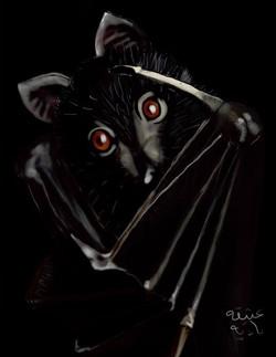 ANZ Studio Shy Bat