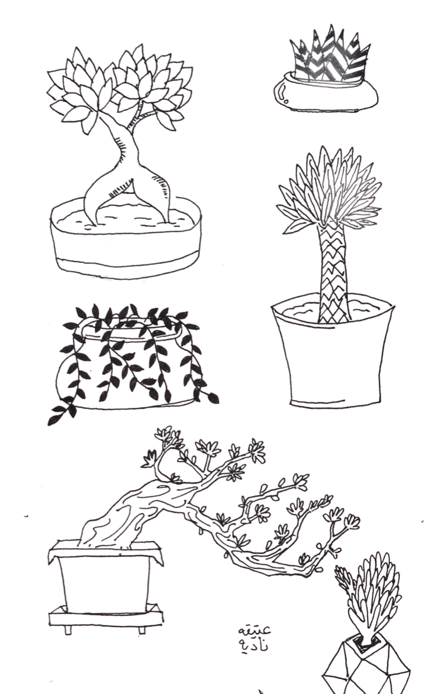Assortment of plants