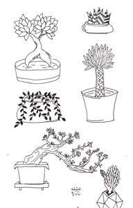 Assortment of plants